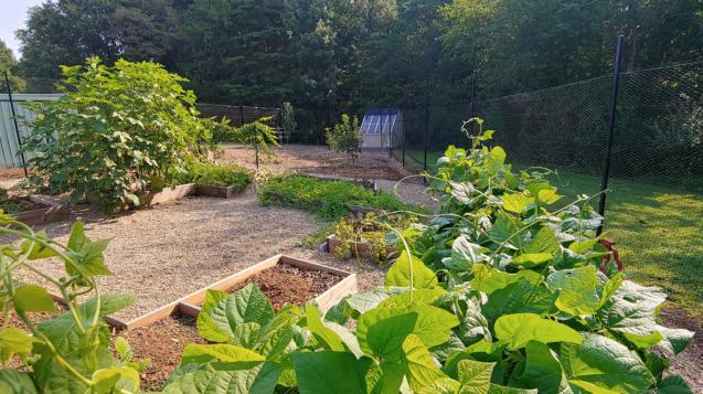 QN_header_garden